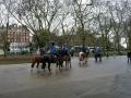 Reiter im Hyde Park