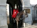 Leibwächter vor dem Horse Guards