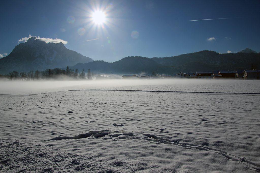 Wenn der Nebel vom Forggensee über die Felder zieht gibt das ein tolles Bild ab