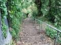 Fußweg zum Alexandra Park