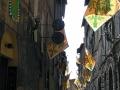 Gasse in Siena mit Fahnen des Contrade des Waldes