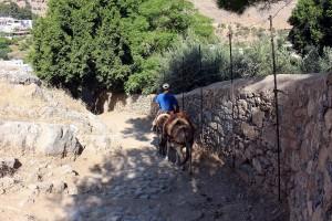 Auf dem Eselweg